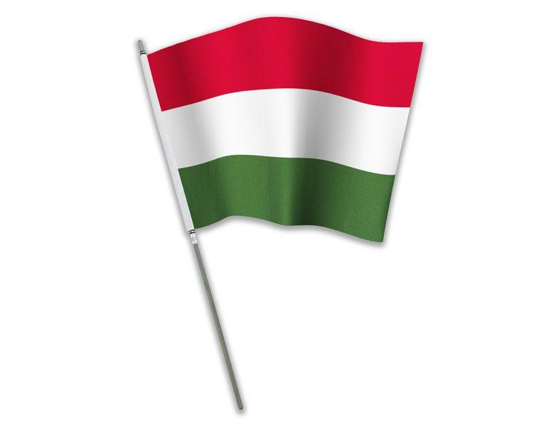 """Let's Flag"" Hungary"